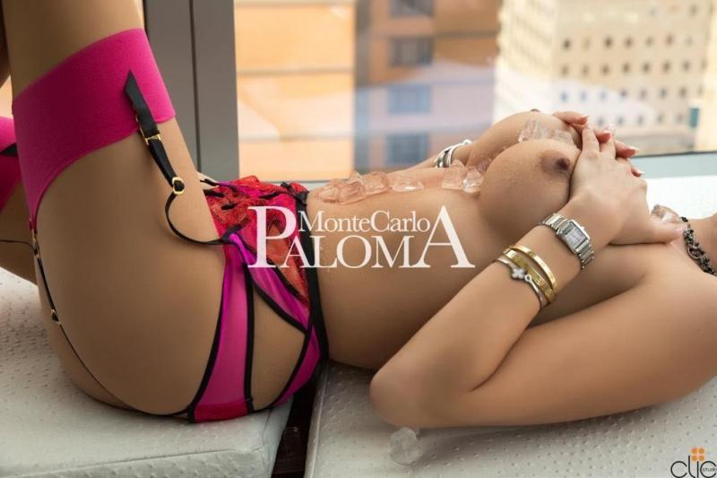 Paloma MonteCarlo